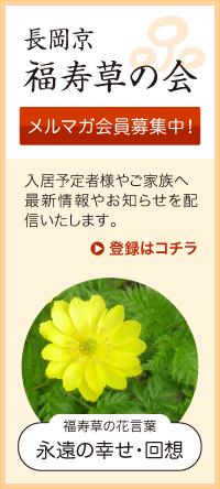 長岡京「福寿草の会」メルマガ会員募集中!